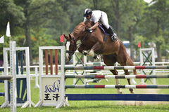 2015 Taiwan equestrian games ( jumping ). Taiwan equestrian games ( jumping ) of challenge cup third time. Taken on May 17, 2015 in equestrian training center Royalty Free Stock Photos