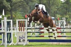 2015 Taiwan equestrian games ( jumping ). Royalty Free Stock Photos