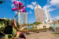 Taiwan in full bloom Stock Photo