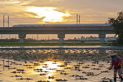 Taiwan High Speed Rail and farmland Stock Photography