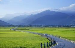 Taiwan lantligt landskap Arkivbilder