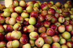 Taiwan legte Pfirsiche in Essig ein lizenzfreie stockbilder