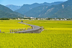 Taiwan rural scenery. Eastern Taiwan rural Beautiful  scenery Stock Image
