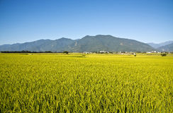 Taiwan's beautiful countryside Royalty Free Stock Photography