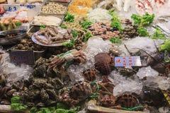 Taiwan skaldjur Fotografering för Bildbyråer
