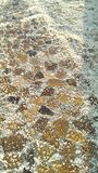 Taiwan Tainan tegelplatta stenlagt salt fält arkivfoton