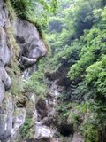 Taiwan Tropical Mountainscape Royalty Free Stock Photo