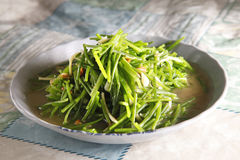 Taiwanese food, herb Royalty Free Stock Photos