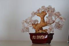 Taiwanesiskt amulettträd för bra lycka med stenar fotografering för bildbyråer