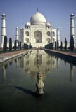 taj Индии mahal Стоковая Фотография