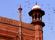 taj мечети agra Индии mahal Стоковые Изображения