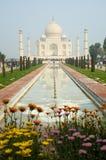 taj agra Индии mahal стоковые фотографии rf