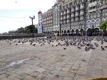 Taj Hotel Mumbai imagem de stock