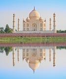 Taj Maha con la riflessione in acqua L'India Fotografie Stock Libere da Diritti
