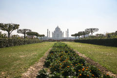 Taj Mahad in Agra, India. This photo is taken in Agra, India. The Taj Mahal, more often meaning Crown of the Palace is an ivory-white marble mausoleum on the Royalty Free Stock Images