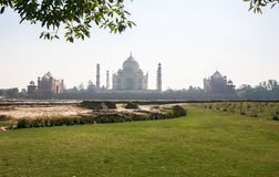 Taj Mahad en Agra, la India Foto de archivo libre de regalías