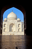 Taj Mahal在印度 库存图片