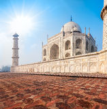 Taj Mahal. Índia Fotografia de Stock Royalty Free