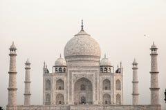 Taj mahal, διάσημο ιστορικό μνημείο Α, μνημείο Α της αγάπης, ο μέγιστος άσπρος μαρμάρινος τάφος στην Ινδία, Agra, Ουτάρ Πραντές Στοκ εικόνες με δικαίωμα ελεύθερης χρήσης
