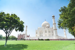 Taj Mahal. Between trees in Agra,  India. (landscape orientation Royalty Free Stock Images