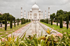 Taj Mahal. With garden foreground Stock Images