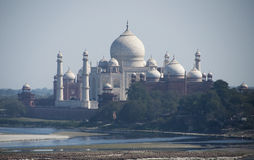 Taj-Mahal Royalty Free Stock Photo