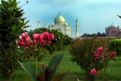Taj Mahal Arkivbild