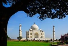 Taj Mahal Στοκ φωτογραφίες με δικαίωμα ελεύθερης χρήσης