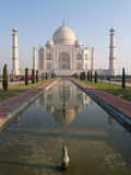Taj Mahal. Palace in India Stock Images
