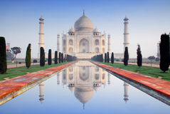 Taj mahal. World wonder taj mahal in soft early morning light with blue sky Stock Image