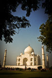 The Taj Mahal, Agar, India Royalty Free Stock Image