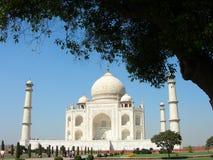 Taj Mahal, Agra, India Fotografia Stock Libera da Diritti