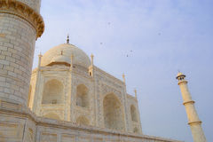 Taj Mahal. Agra India - Taj Mahal during day Stock Images