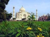 Taj Mahal, Agra, Indien - 02 08 2010: Taj Mahal in den Farben Marmor-Taj Mahal weit stockfotos