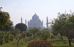 Taj Mahal in Agra, Uttar Pradesh, India. Look in a morning haze through a garden on  opposite river bank Stock Photos