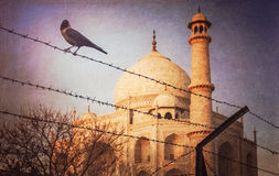 Taj Mahal behind barbed wire Royalty Free Stock Images