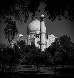 Taj Mahal in Black and White. A view from the gardens Royalty Free Stock Photo