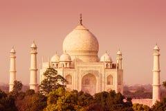 Taj Mahal d'une distance Photographie stock