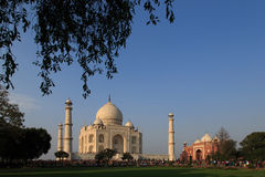 Taj Mahal at dawn Royalty Free Stock Image