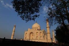 Taj Mahal at dawn Royalty Free Stock Photos