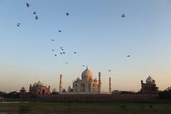 Taj Mahal at dawn Royalty Free Stock Photo