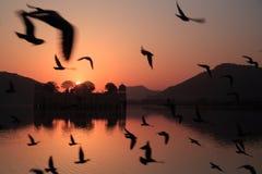 Taj Mahal at dawn Stock Photography