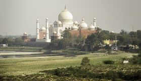 Taj Mahal de fort d'Âgrâ Photo stock