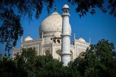 Taj Mahal de jardin Image libre de droits