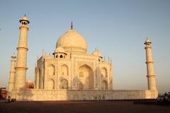 Taj Mahal in der Morgenleuchte Stockfotografie