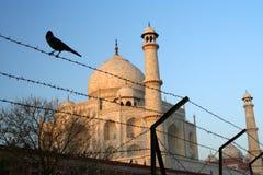 Taj Mahal derrière le barbelé Images stock
