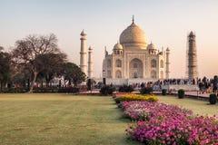 Taj Mahal di stupore Fotografia Stock