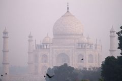 Taj Mahal in morning mist Stock Images