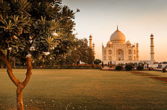 Taj Mahal en Agra, la India imagenes de archivo