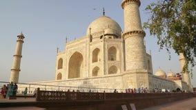 Taj Mahal stock video
